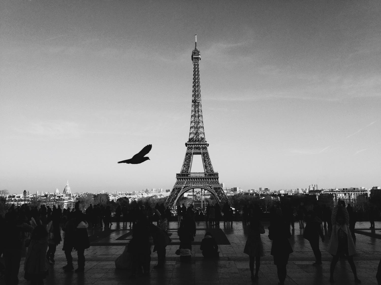 Paris_unsplash-1.jpg