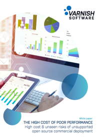 White paper image High Cost of Poor perf