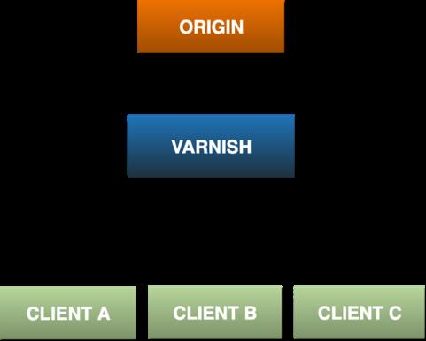 origin-varnish